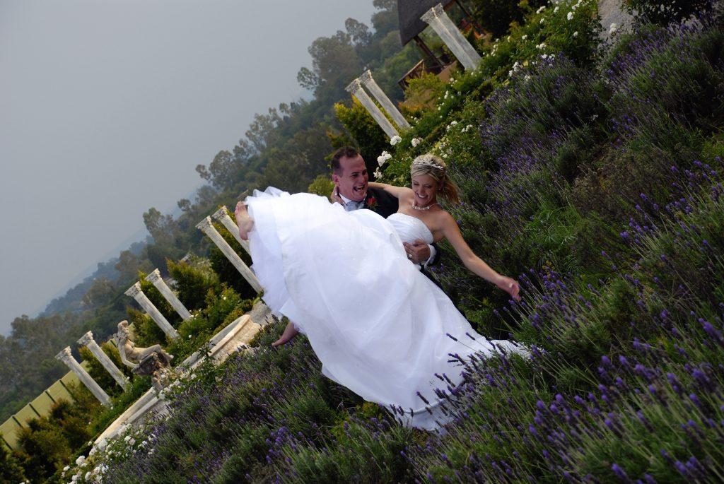 Lavender field valverde