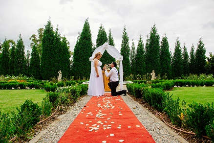 Valverde Couple, groom proposing